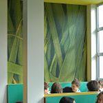 Gymnasium Apeldoorn